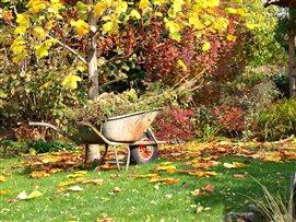 Gartenabfaelle und Herbstschnitt einfach entsorgen