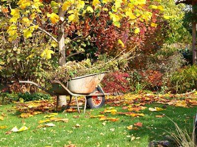 Herbstschnitt im Garten und die korrekte Abfallentsorgung