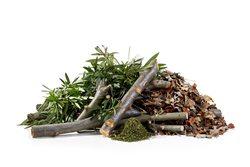 Grünschnitt und Strauchschnitt Container online mieten